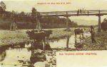 (1905 r.)
