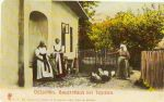 (1904 r)